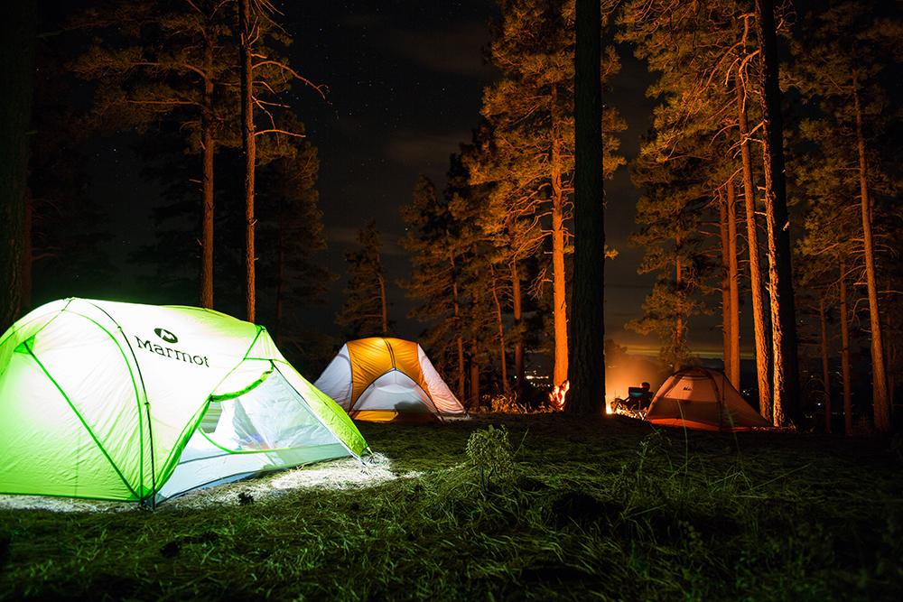 Monitor campamento